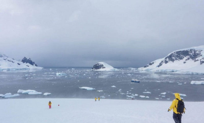 Aller en Antarctique