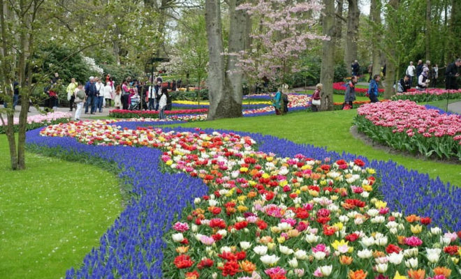 A visiter à Amsterdam