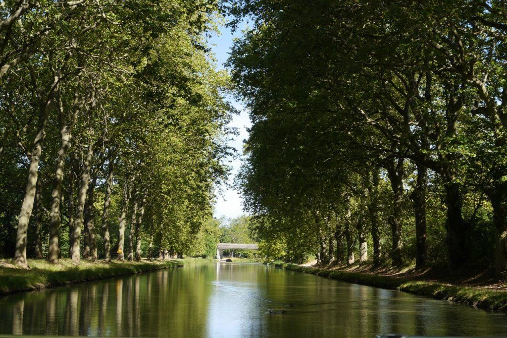 Organiser une croisière sur le Canal du Midi