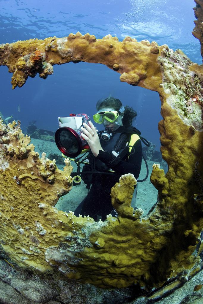 lieux de plongée