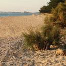 location tranche sur mer