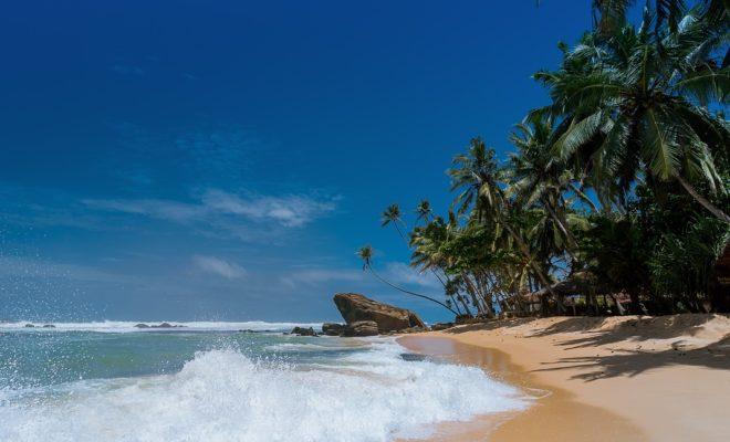 plage île